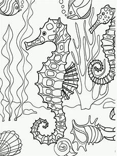 coloring pages for adults sea animals 17312 underwater seahorse coloring page adultcp beachy coloring pages travel
