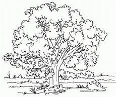 araguaney dibujo para colorear dibujos de 193 boles para colorear e imprimir gratis