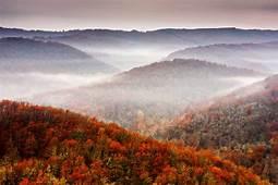 Nature Fall Mountains Tree Sky Foliage Autumn Mountain