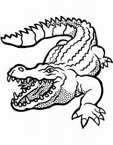 Malvorlage Krokodil Einfach Krokodile Zum Ausmalen Ausmalbilder Krokodile