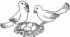 malvorlage vogel im nest pin malvorlage kohlmeise und blaumeise abb 9773 on