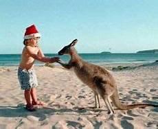 63 best in australia images in