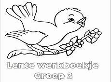 Lente Werkboekje Groep 3   Werkboekjes Printen op Minipret.nl