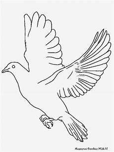 Top Menggambar Sketsa Burung Merpati Sketsabaru