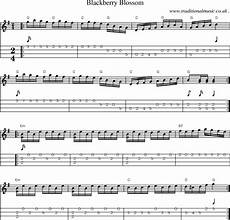 american old time music scores and tabs for mandolin blackberry blossom