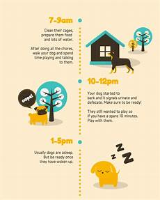 free infographics maker design with canva free infographics maker design online with canva
