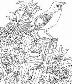 Malvorlagen Tiere Blumen Kostenlose Erwachsenen Malvorlagen Bild Stonie