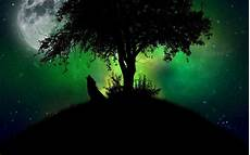cool green wolf wallpaper wolf howling at the moon wallpaper 183 wallpapertag
