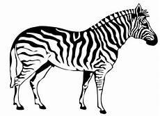 Bilder Zum Ausmalen Zebra Ausmalbilder Kostenlos Tiere 8 Ausmalbilder Kostenlos