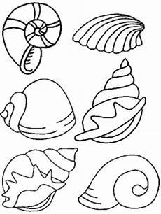 Muschel Ausmalbilder Malvorlagen Sechs Verschiedene Muscheln Ausmalbild Malvorlage Tiere