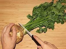 ersatz für salz selleriesalz mal anders salzen mit einem salz ersatz
