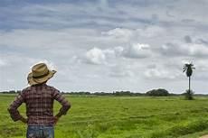 flor del estado barinas el llano del estado barinas es una de las tierras m 225 gicas de nuestro hermoso pa 237 s turismo