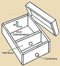 bumble bee house plans bumble bee houses