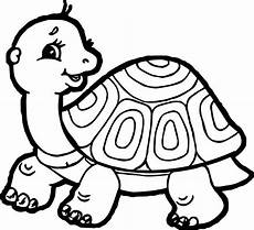 Turtle Coloring Sheet Tortoise Turtle Side Coloring Page Tortoise Turtle
