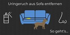 schlafzimmer geruch beseitigen uringeruch aus sofa entfernen so wird deine