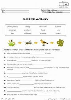 science worksheets websites 12458 primaryleap co uk food chain vocabulary worksheet food chain vocabulary worksheets