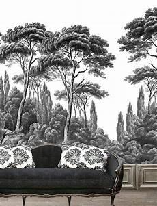papier peint panoramique pins et cypr 232 s noir et blanc