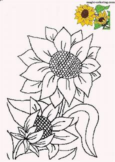 sunflowers free printables coloring