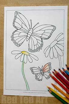 Malvorlage Schmetterling Blume Summer Colouring Pages For Butterflies And Flowers