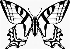 Schmetterling Malvorlage Zum Ausdrucken Schmetterling Malvorlagen