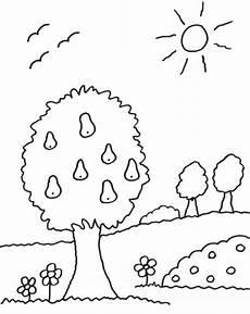 kostenlose malvorlage b 228 ume birnenbaum zum ausmalen