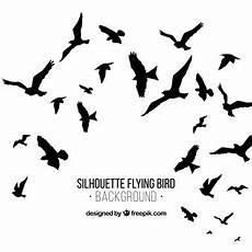 31 greifvogel silhouetten zum ausdrucken besten bilder