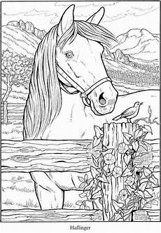 coloring pages horses collection whitesbelfast