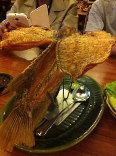 Gambar Ikan Gurame Goreng Terbang Gambar Ikan Hd