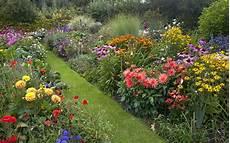 plants for a modern cottage garden david domoney