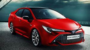 Toyota Unveils 2019 Corolla  Whats Goin On Qatar