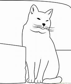 Katze Sitzend Malvorlage Cat Sitting Near Sofa Coloring Page Free Cat