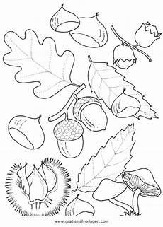 Malvorlagen Gratis Natur Kastanien 3 Gratis Malvorlage In Herbst Natur Ausmalen