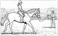 ausmalbilder pferde springreiten malvorlagentv