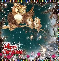 merry christmas owls merry christmas christmas owls merry