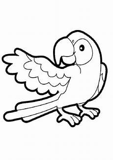 Ausmalbilder Tiere Papagei Ausmalbilder Papagei 10 Ausmalbilder Tiere