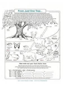 science worksheets biology 12123 decomposers worksheets for archbold biological station ecological research