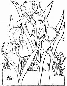free floral coloring page the graphics