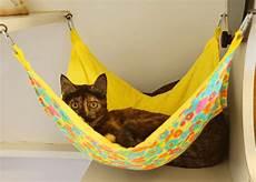 Cat Hammock Ideas