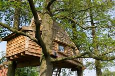 Im Baumhaus Wohnen 187 Braucht Eine Genehmigung