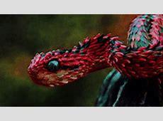 Desktop Wallpaper GIFs   Find & Share on GIPHY