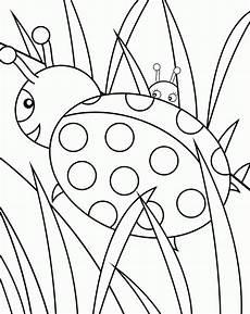 insekt ausmalbilder malvorlagen 100 kostenlos