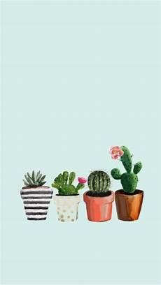 cactus flower iphone wallpaper cactus succulent wallpaper summer wallpaper in 2019
