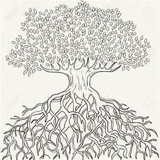 Ausmalbilder Erwachsene Baum Ausmalbild Baum Mit Wurzel Kinder Ausmalbilder