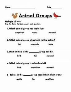 animals around us worksheet for grade 3 14405 animal groups assessment animals grade science grade activities