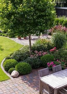 Terrasse Gestalten Pflanzen - 33 best trees for small gardens that won t limit your