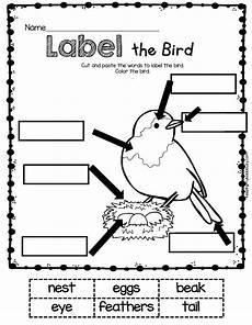science worksheets for nursery class 12314 may in kindergarten freebies science animals kindergarten kindergarten science