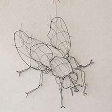 Insekten Malvorlagen Lyrics Insekten Malvorlagen Template Vorlagen Malvorlagen