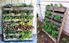 fare l orto in giardino l ortodimichelle ri uso orto pallet