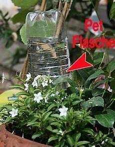 pflanzen bewässern mit plastikflasche bew 228 sserung in der urlaubszeit so vertrocknet keine pflanze bew 228 sserung garten bew 228 sserung