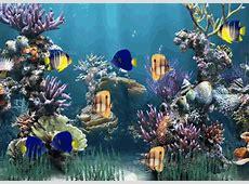 Moving Aquarium Wallpaper   WallpaperSafari
